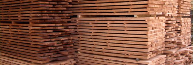 Bukové drevo a bukový nábytok